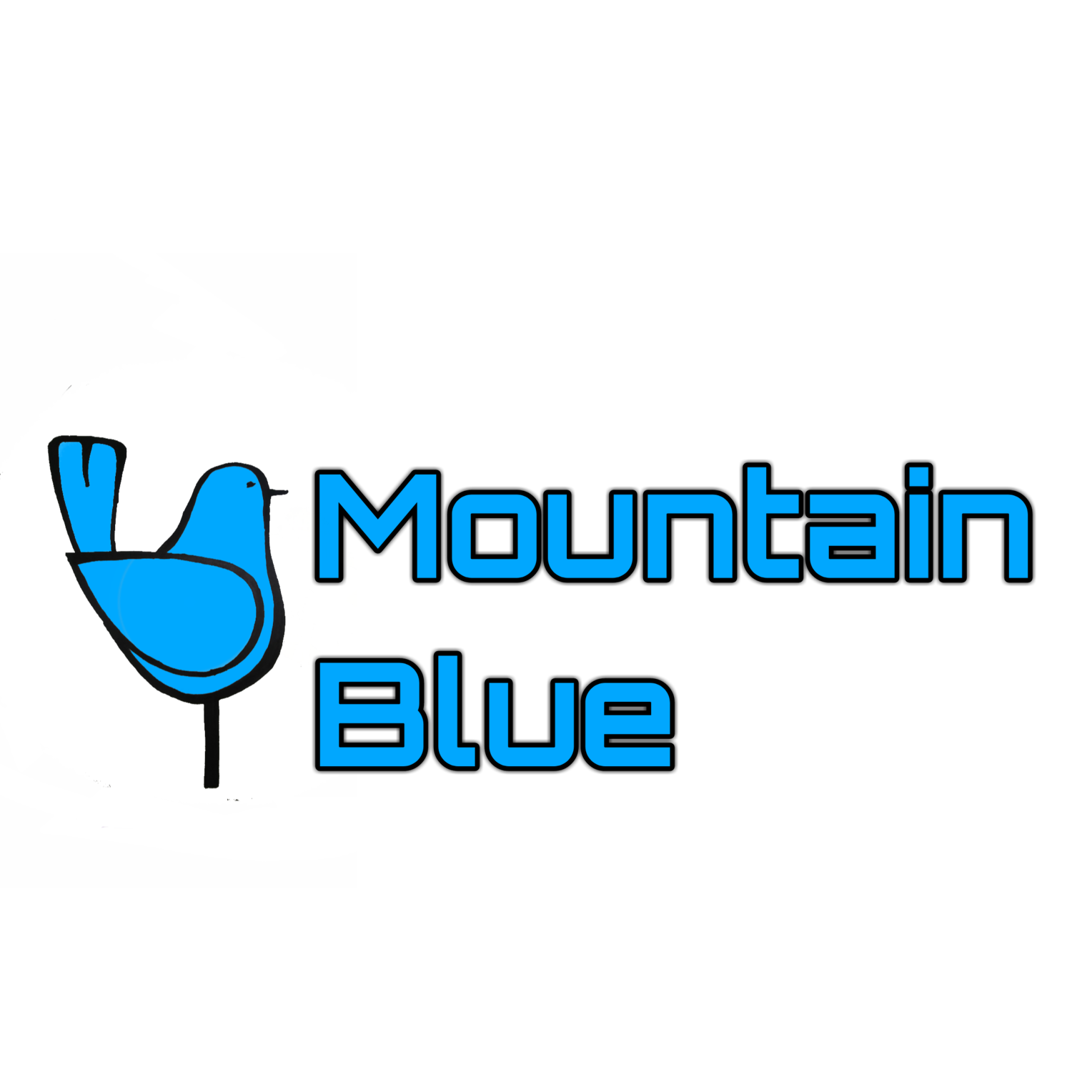 Mountain Blue Services LLC