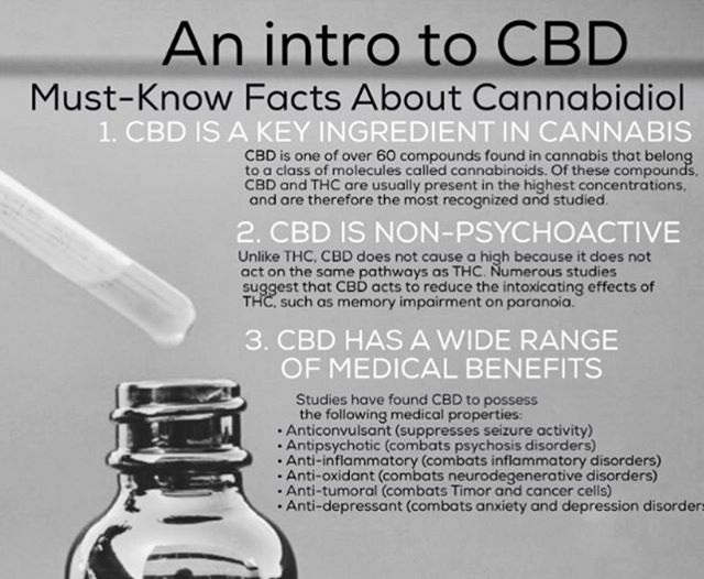 For those who want to be educated, here is some good information about CBD. High Power Massage is proud to now offer CBD massage. Book your massage today on HIGHPOWERMASSAGE.COM  #sd #sdca#sandiego #missionhills #missionvalley #hillcrest #northpark #gaslampdistrict #sunsetcliffs #pointloma #delmar #lajolla #encinitas