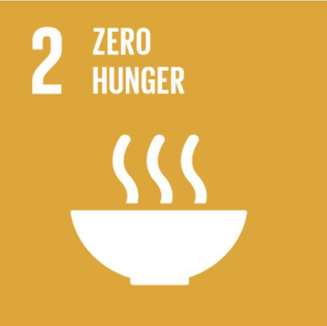 SDG EN 02.png