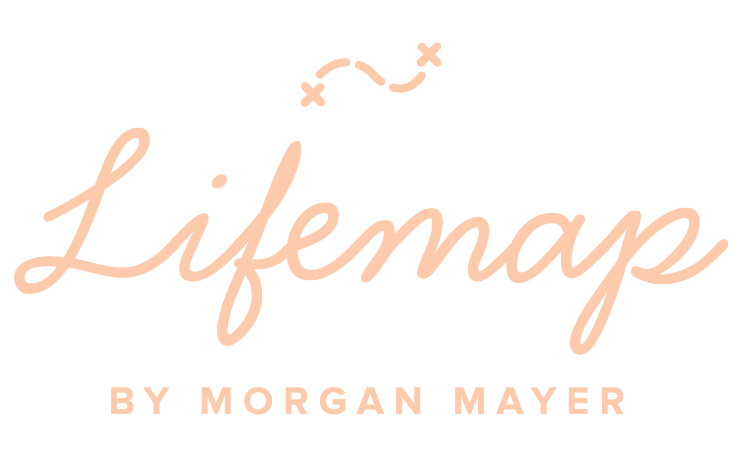 Lifemap by Morgan Mayer