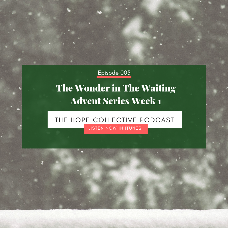 The Wonder in The Waiting - Advent Series Week 1 - The Hope Collective Podcast