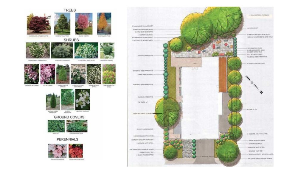 LandscapePlan.png
