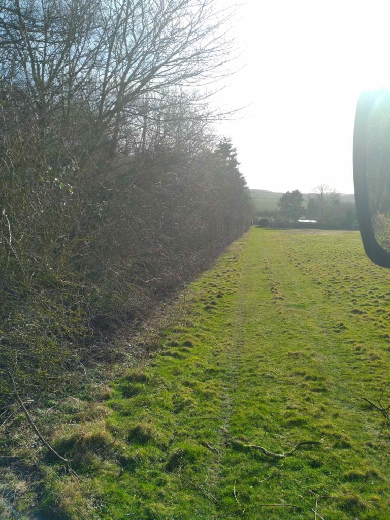 Hedge before reduction