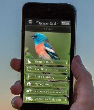 Audubon Bird GuideApp - The Audubon Bird Guide is a free and complete field guide to over 800 species of North American birds, right in your pocket. Built for all experience levels, it will help you identify the birds around you, keep track of the birds you've seen, and get outside to find new birds near you.With over 2 million downloads to date, it is one of the best and most trusted field guides for North American birds. FREE.FOR INFORMATION
