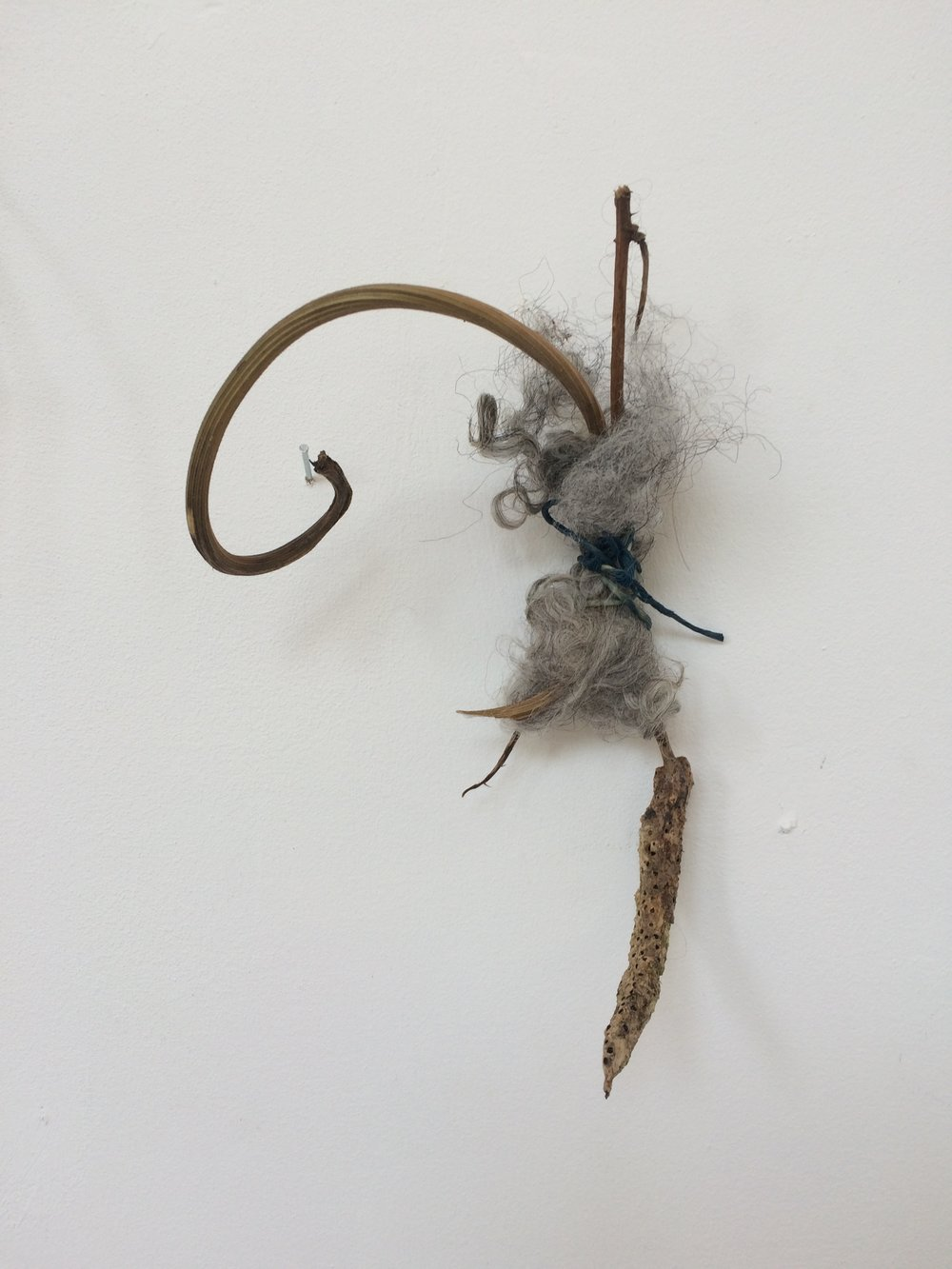 Untitled (seed) ,  2018 twig, wool, string, seed-head h20cm