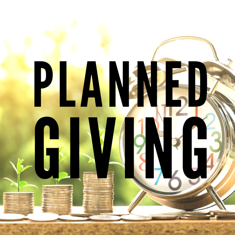 With a planned gift,  you can combine your desire to give to charity with your overall financial, tax, and estate planning goals. Planned giving gives you a special connection with our ministries. You can help our community for now and for years to come.