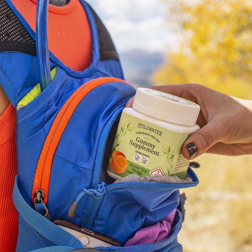greenteamango_backpack_cropped.jpg