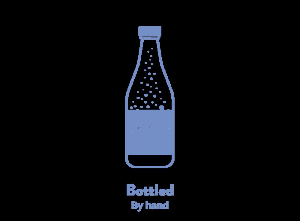 kombucha-brewing-4.png