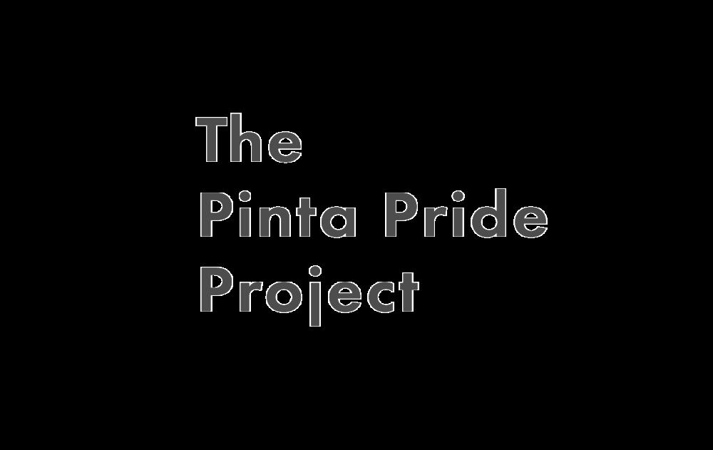 PintaProj_Logo@2x.png
