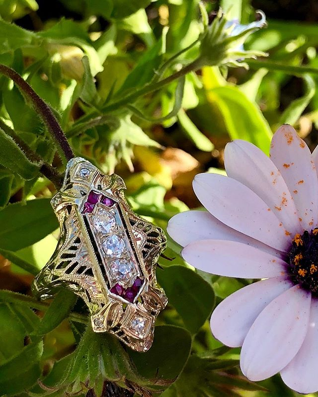 French cut rubies, old European cut diamonds and filigree... three of my favorite things ❤️ available in store and on Etsy for $2750.  #filigreefriday #filigree #edwardianring #vintagebride #oldeuropeancut #antiquering #frenchcutrubies #etsy #instore #carlsbadvillage #coppercanary