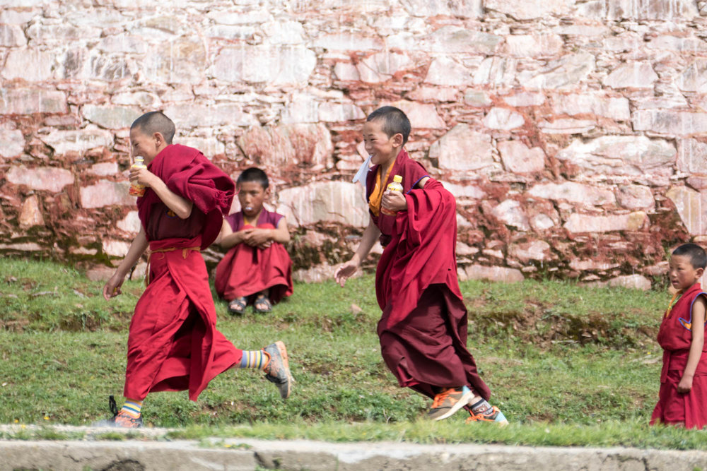 Monks in training at play