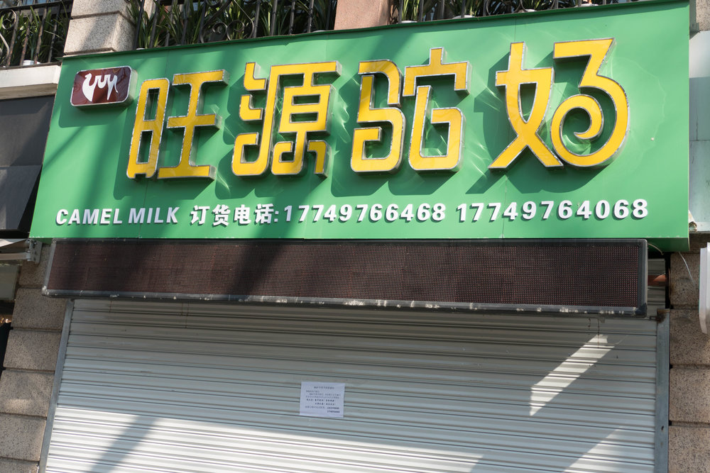 A specialty store selling camel milk products! Closed for the new year.