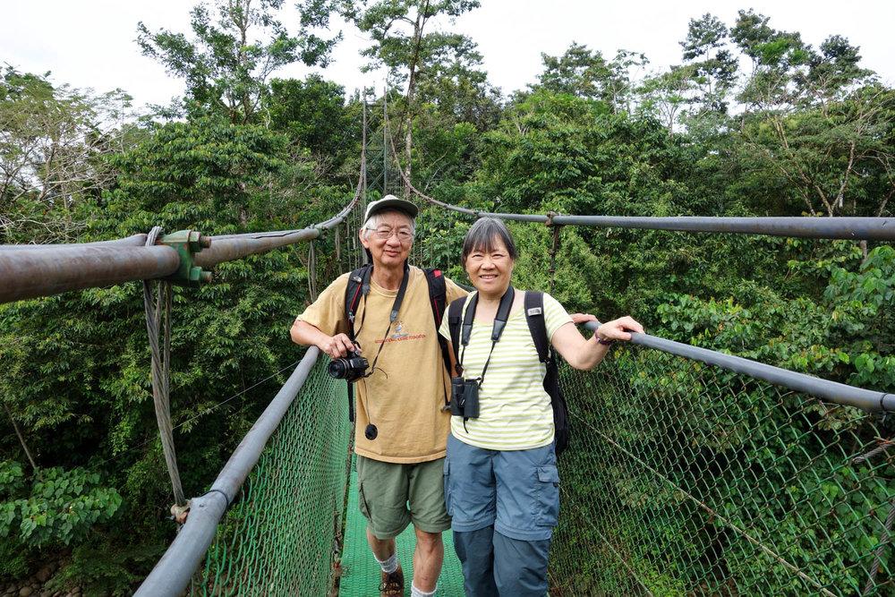 Canopy bridge at the Tirimbina Reserve
