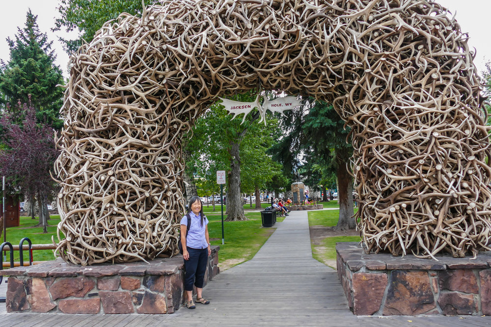 The elk antler gate in Jackson Hole