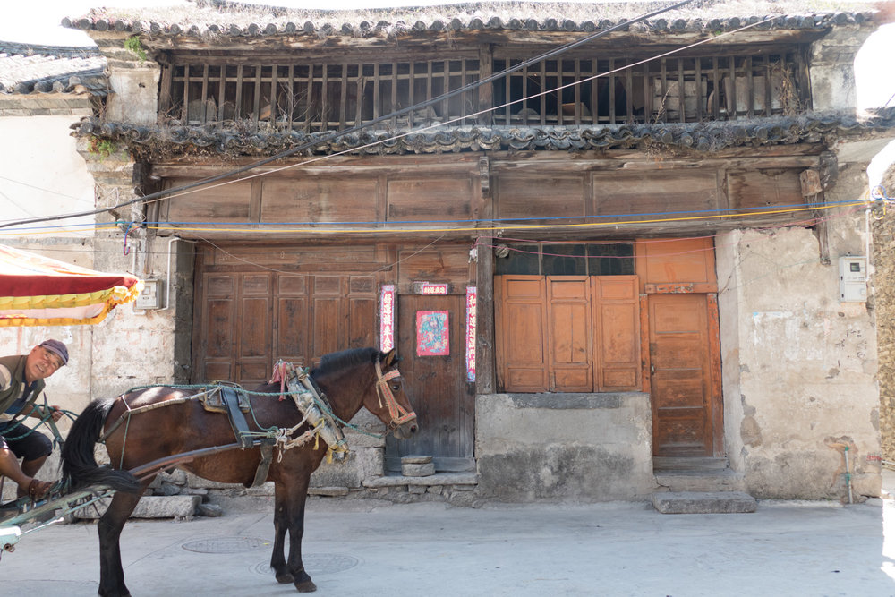 Friendly horse-drawn cab driver, wondering why we want to take a picture of this ancient building.
