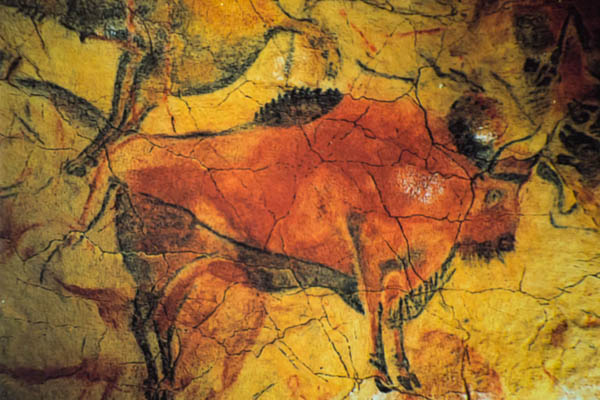 Examples of the cave art