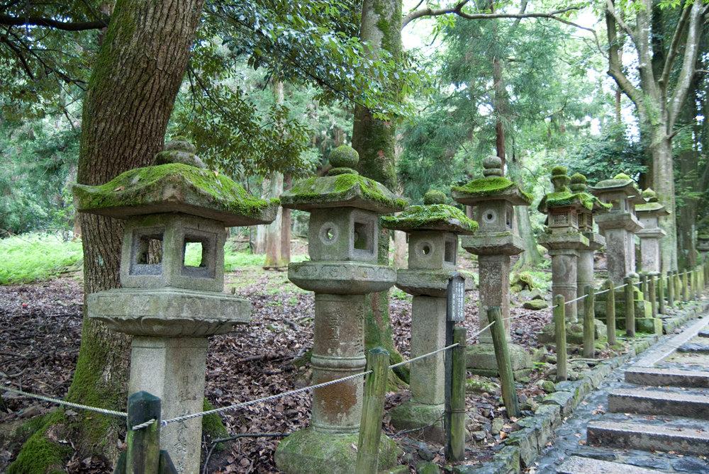 Stone lanterns at Kasuga temple