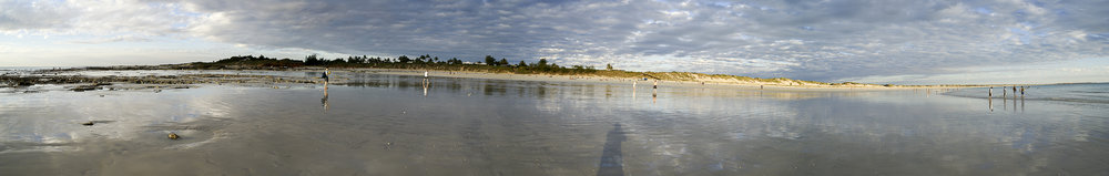 Panorama of Cable beach