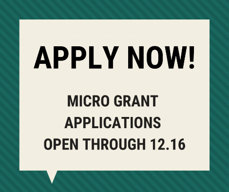 OPEN CALL_ MICRO GRANTS (1).png