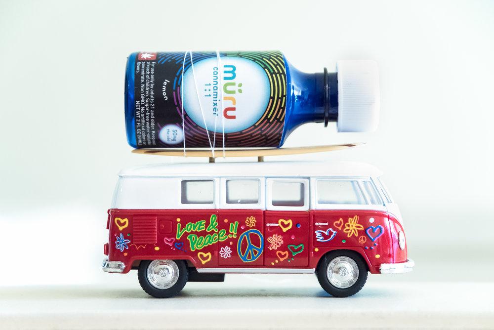Van (1 of 1).jpg