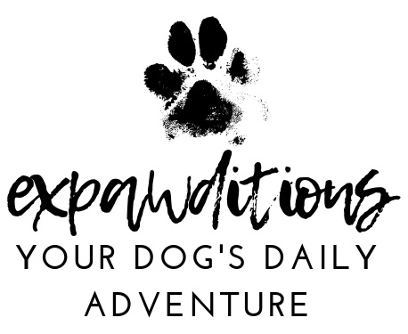Expawditions
