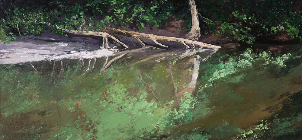 Wissahickon Creek Study 2