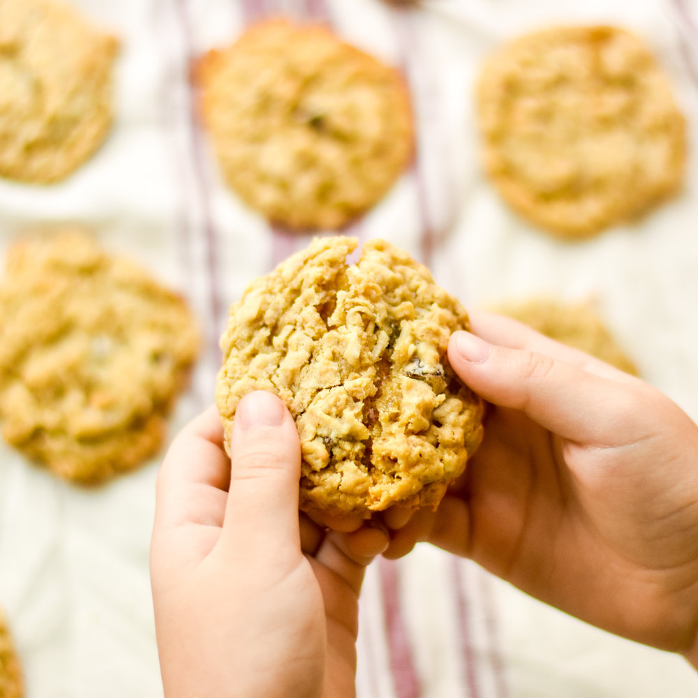 fresh baked coconut chocolate chip oatmeal cookies