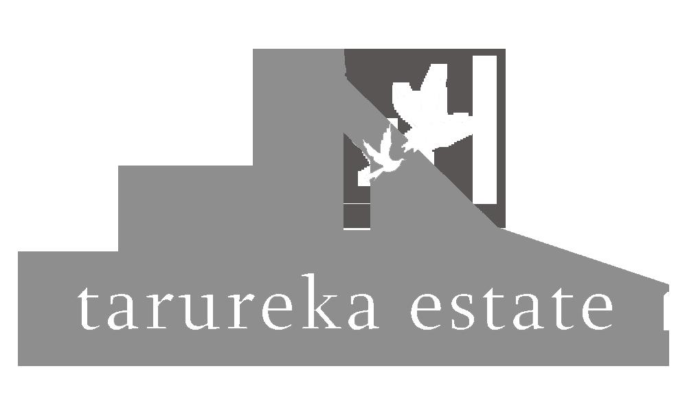 Tarureka Estate Barn Weddings Wairarapa Weddings Wellington