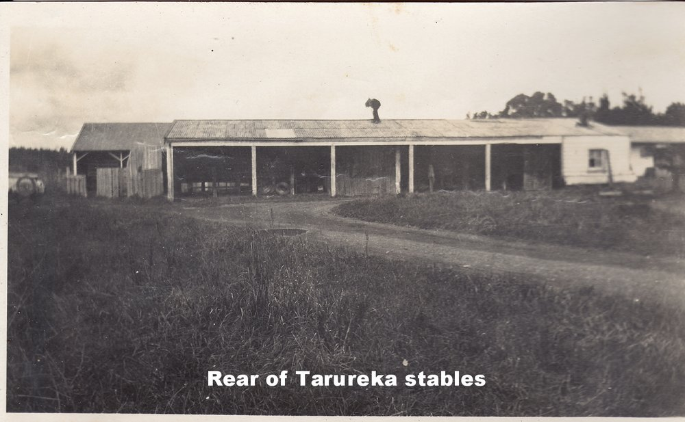back of stables small.jpg