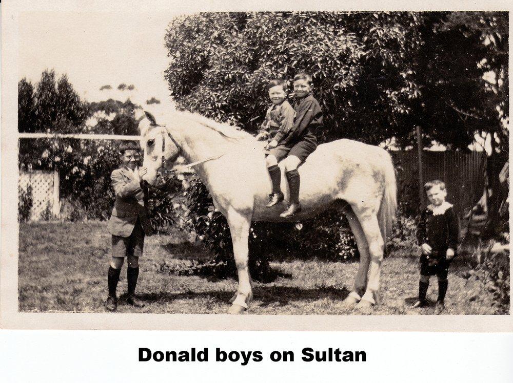 Boys and Saltunsmall.jpg