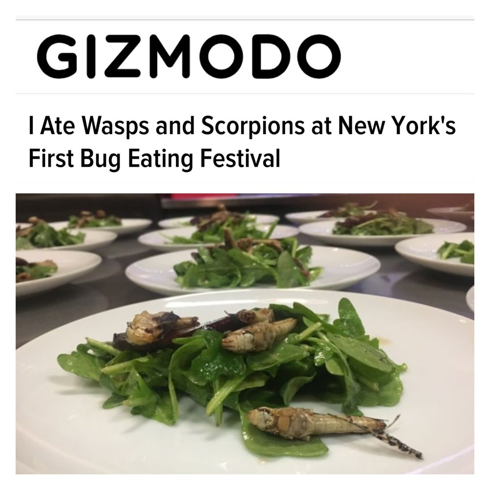 https://gizmodo.com/i-ate-wasps-and-scorpions-at-new-yorks-first-bug-eating-1799982254