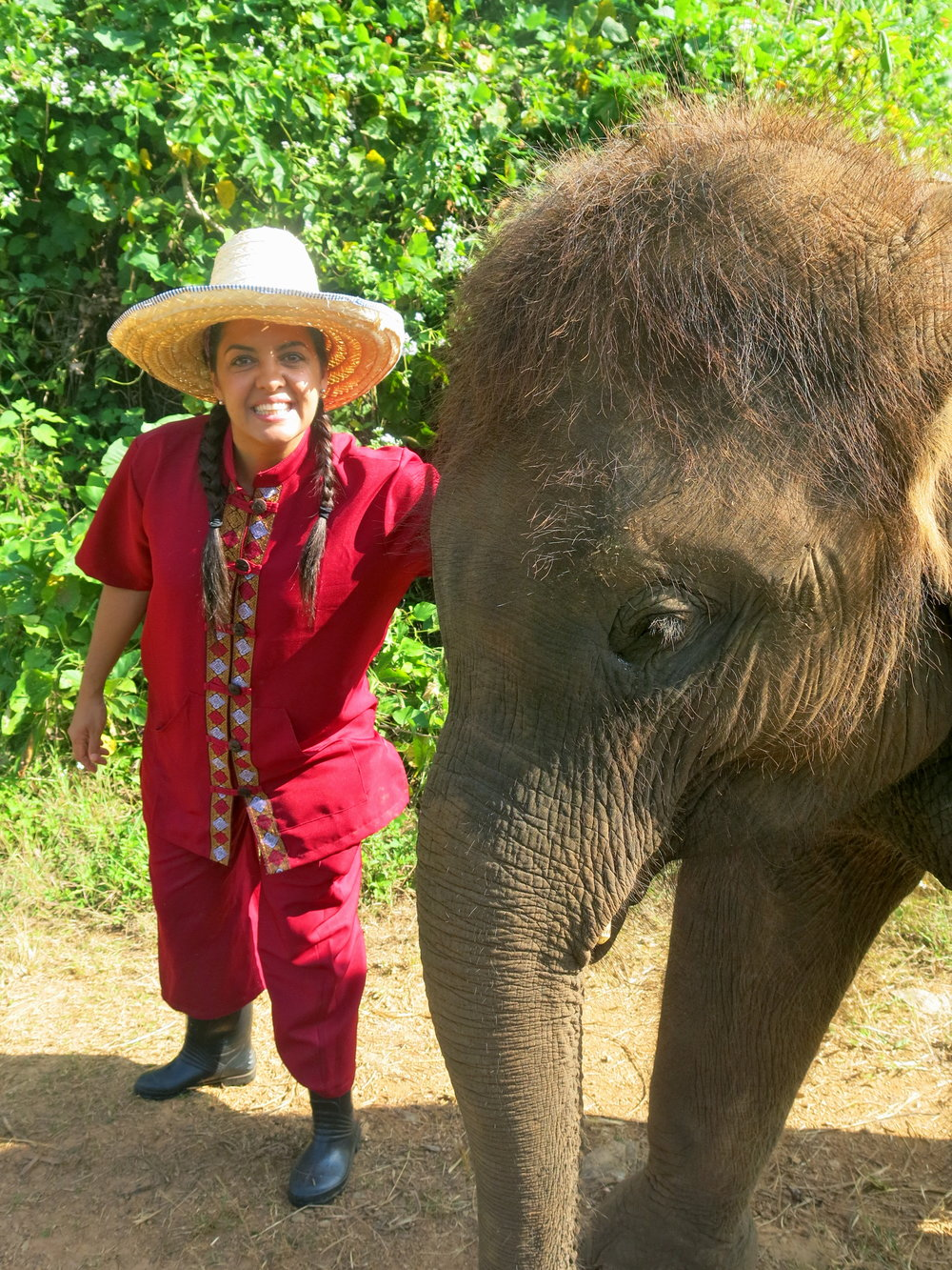 Private interaction with a baby elephant during a walk in the forest
