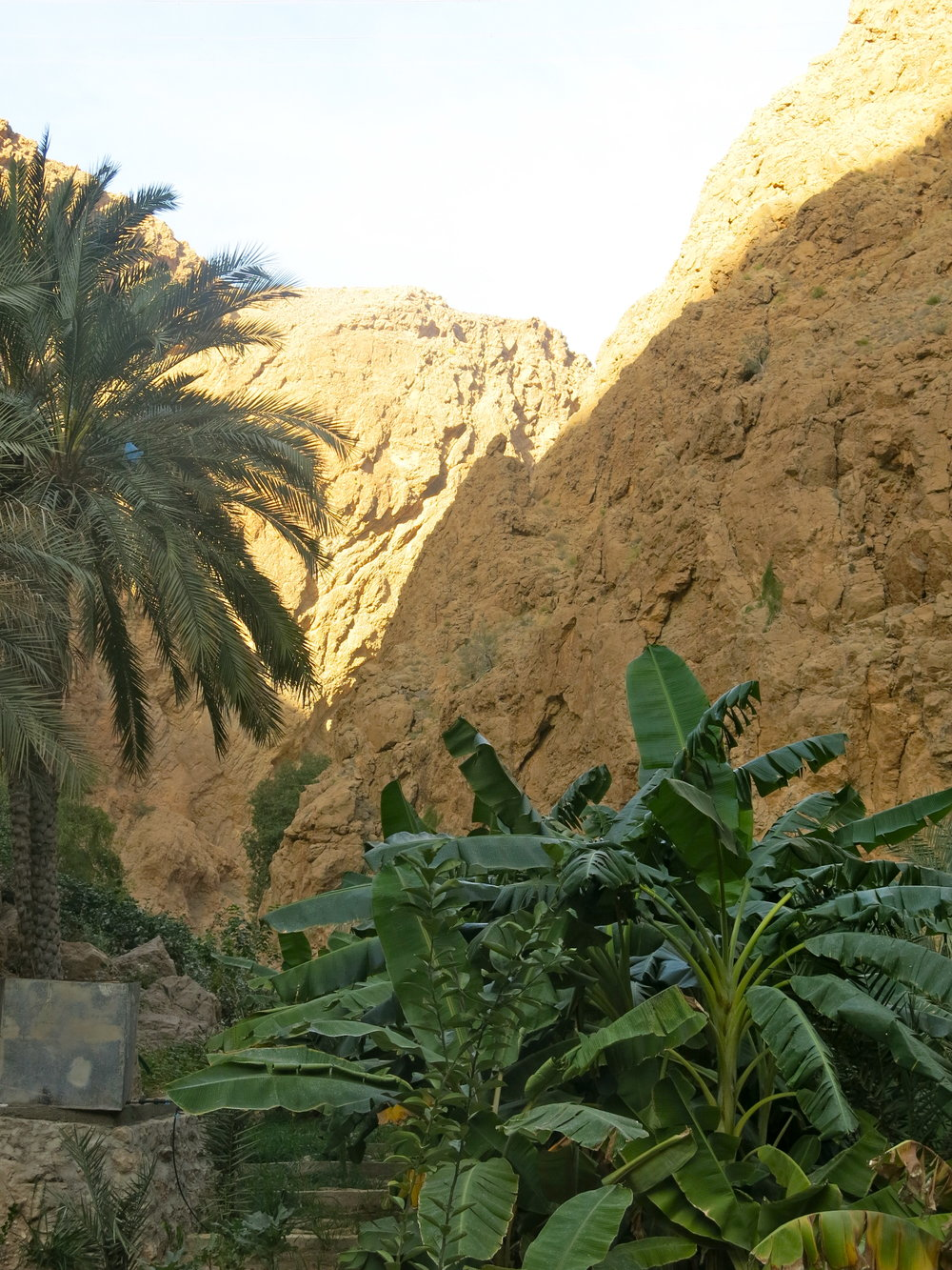 Scenery during the hike in Wadi Shab