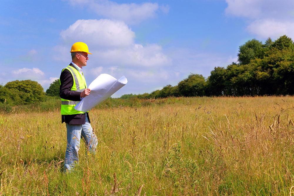 surveyer.jpg