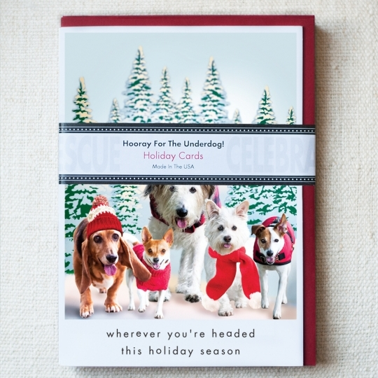 Set of ten holiday cards - $19.95