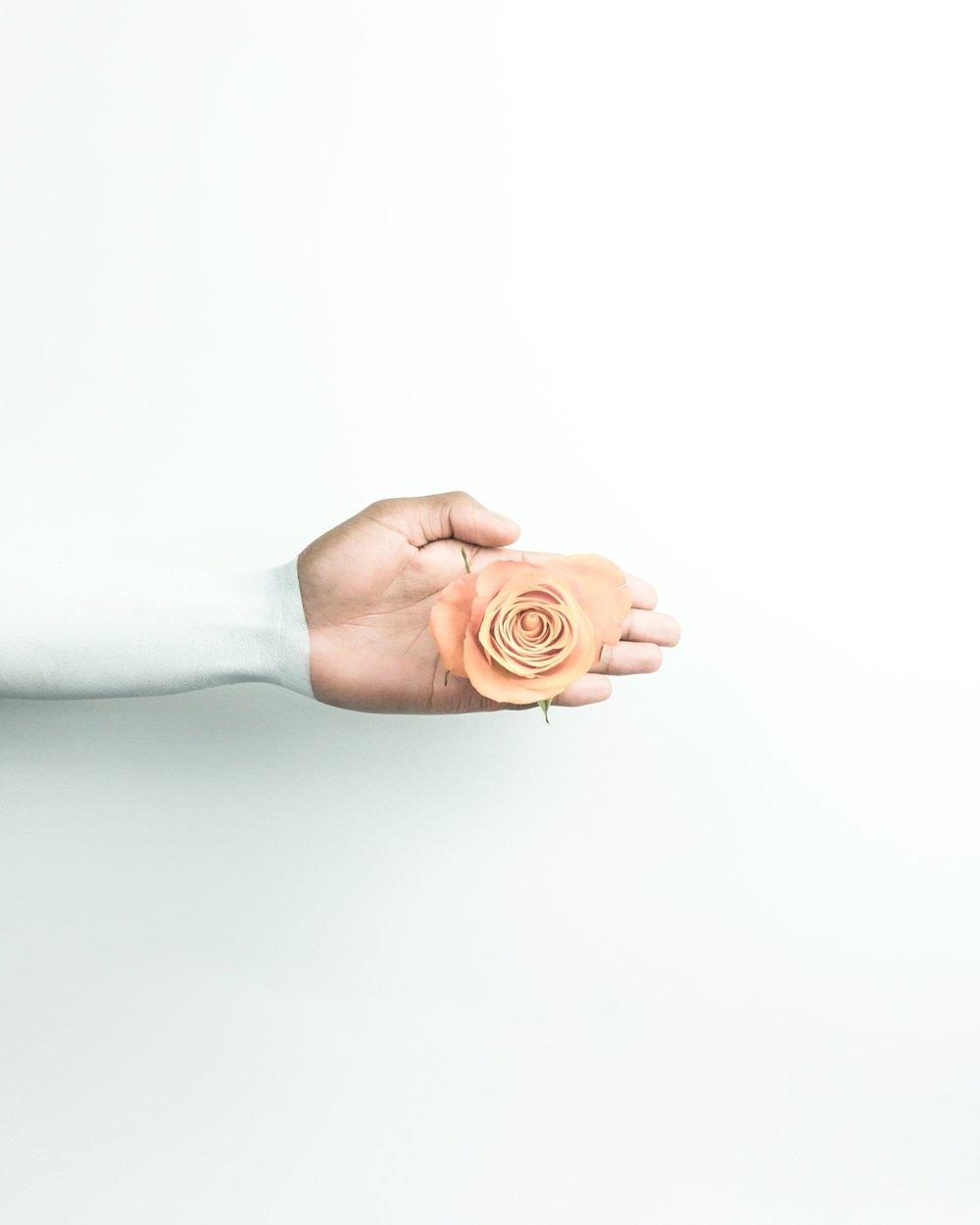 Uso della Crema Depigmentante - !!! La Crema Depigmentante è efficace sulle sole macchie da Iperproduzione di melanina, su ogni altra macchia la Crema è totalmente inefficace, è necessaria una visita dermatologica per capire l'origine della macchia.!!! La crema ha effetto solo se l'origine della macchia viene individuata ed eliminata.!!! La Crema Deve essere applicata con la massima costanza due volte al giorno, l'uso saltuario ne compromette l'efficacia.!!! L'azione della Crema Depigmentante è visibile dopo che la pelle ha cambiato il primo strato di pelle (in media servono 29 gg la tempistica è indicativa, dipende da soggetto a soggetto), la pelle è composta da cinque strati, il trattamento da' risultati quando viene completato l'intero ciclo di cambio di tutti gli strati di pelle, ovvero circa 5 mesi.