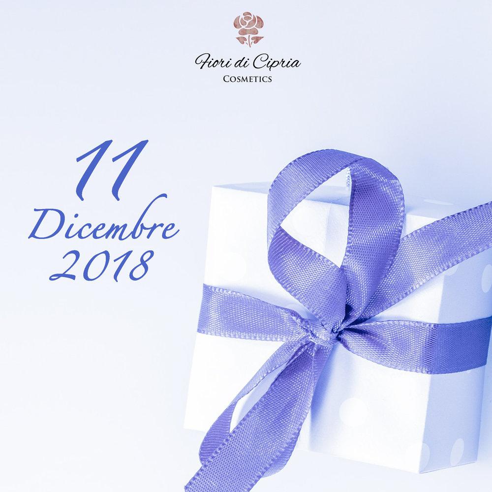 11 dicembre.jpg