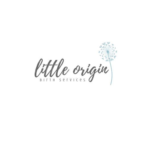 little origin birth services