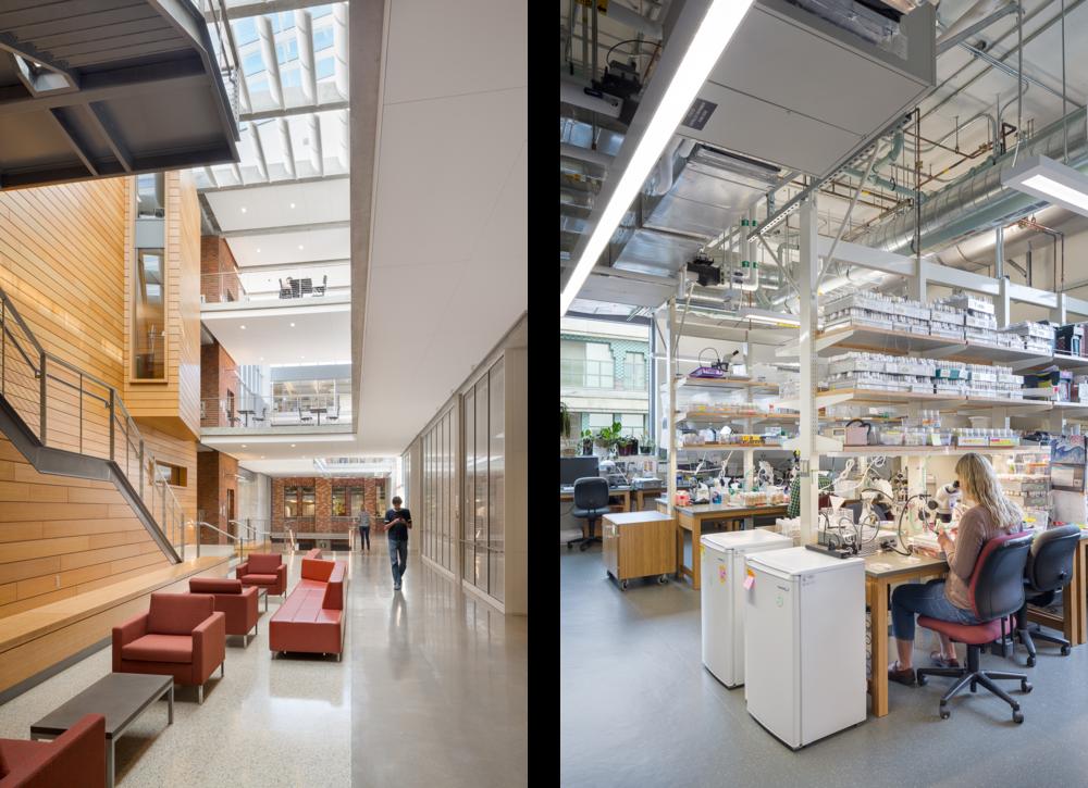 University of Oregon - Lewis Integrative Science Building / Lease Crutcher Lewis