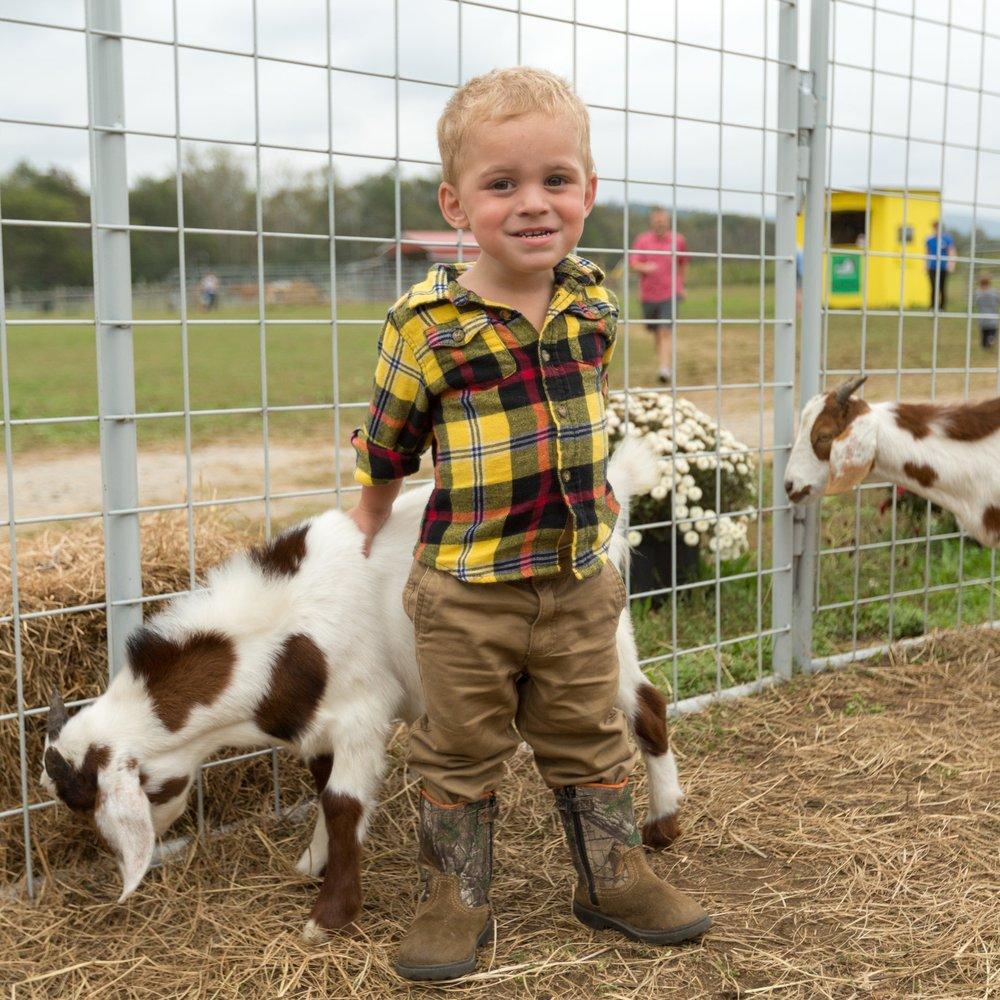 Critter Barn McDonald Farm Tennessee