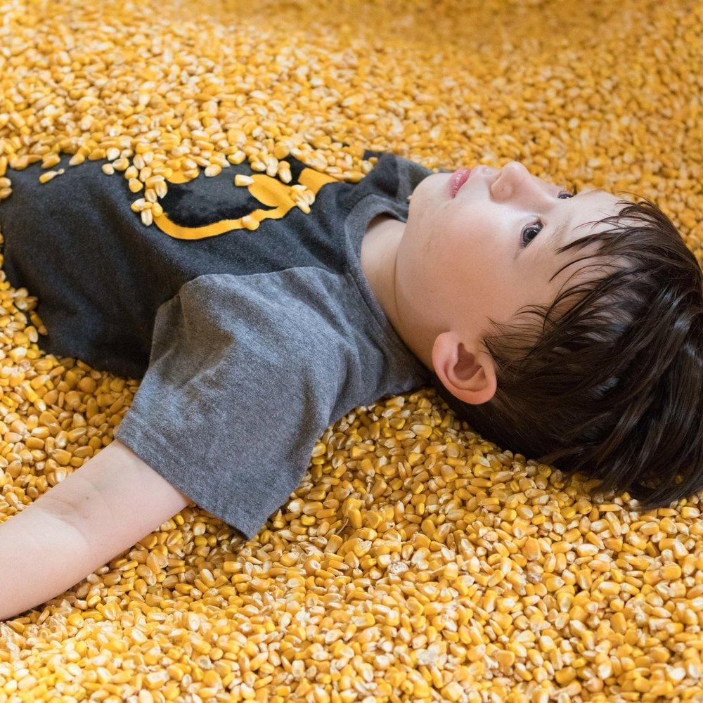 Corn Crib McDonald Farm Tennessee
