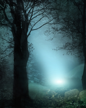 forest-fantasy-16.jpg