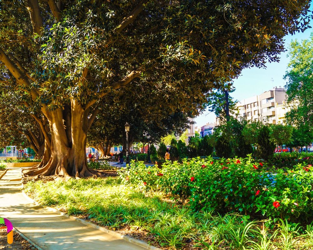 4). Jardín De Floridablanca - Erected in 1786 and reformed in 1849, this wonderful public garden is the oldest garden in the Murcia city. The garden is situated in the exotic neighbourhood of Carmen with the Segura River complimenting it.Location - South of Murcia city centre.