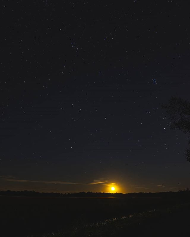 Light is precious in a world so dark. . . . . .  #nightsky #ig_nightphotography #astrophotography #universetoday #nightscape #fs_longexpo #longexpoelite #rsa_night #starrynight #milkywaygalaxy #stargazing #skymasters #longexposure_shots #astrophoto #nightimages #milkywaychasers #nightshooters #natgeospace #night_shooterz #ig_astrophotography #longexpo #nightscaper  #canonphotos #canoneos #canonrebel #canonphotographer #focalmarked