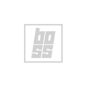 boss_logo.jpg