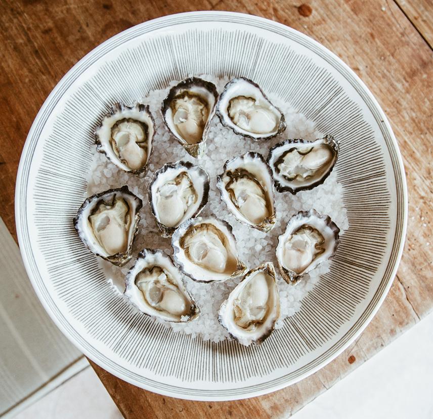 oayster2.jpg