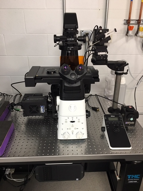 Fully automated microscope