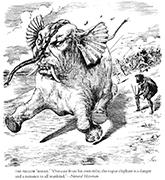 Boomerang 1888 Jun 30 p213
