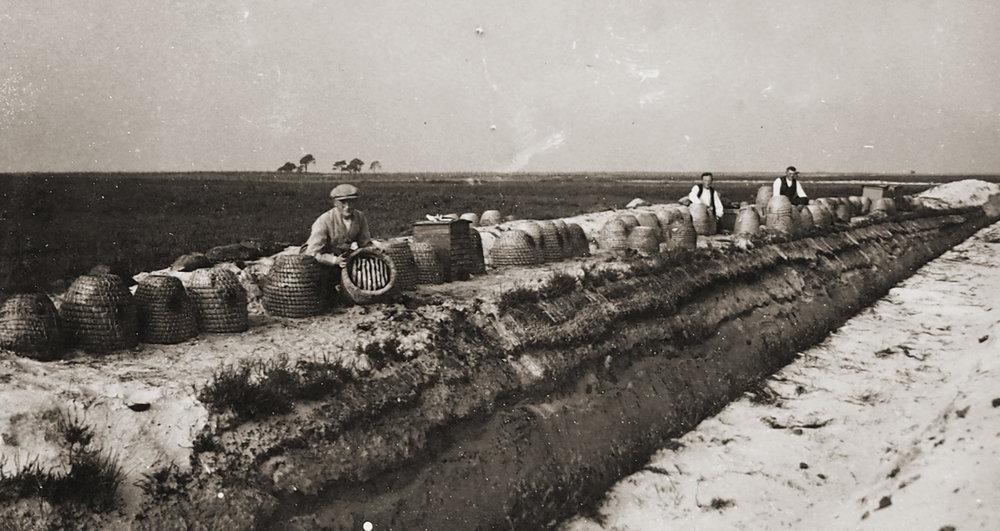 B5-1920-BvD-imker1.jpg