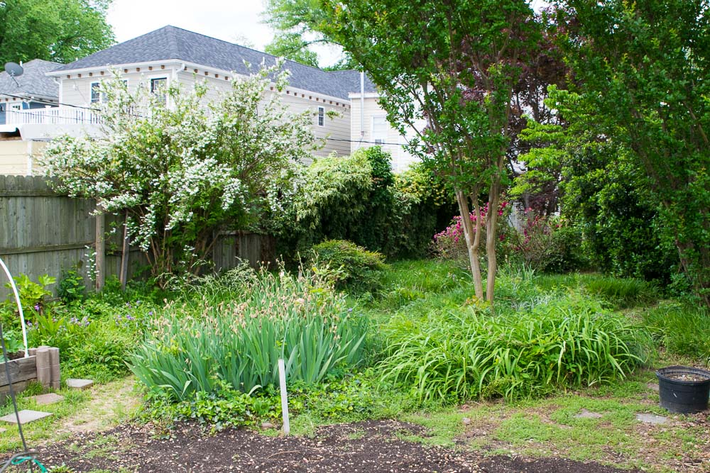 Oregon-Hill-gardens-3768-34.jpg